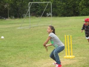 cricket 005