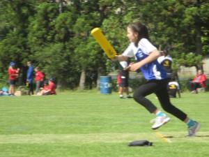 cricket 040