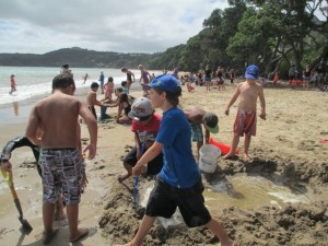 Coopers Beach 2014 039 (Small)